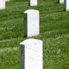 Headstone Cleaner Chemical
